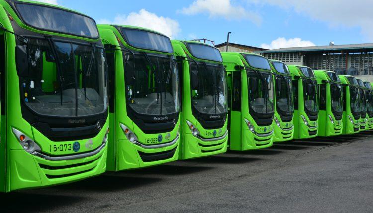 avtobusy OMSA