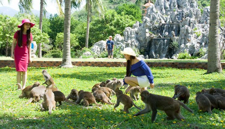 Ostrov obezyan Hon Lao